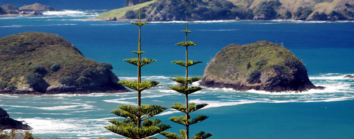 Cheap Flights To Norfolk Island Nlk Return Airfares
